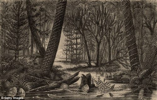 Orthacanthus dominated the waters of the ¿Coal Forests,¿ illustrated above, roughly 300 million years ago