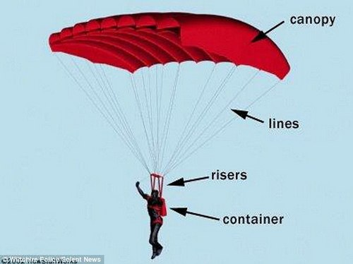 Parachute equipment is labelled above. Two vital pieces of equipment which fasten the parachute to the parachutist's harness were missing, the court heard