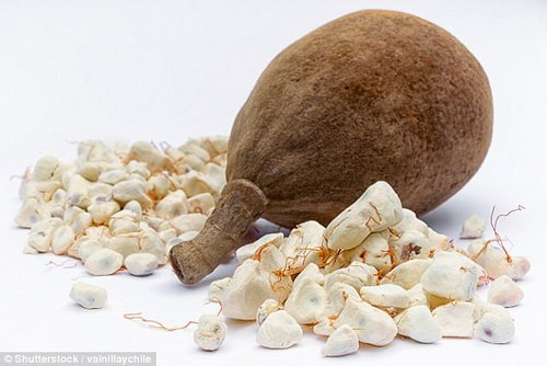 Baobab is a rich source of vitamin C, potassium and B complex vitamins, Mr Hay claims