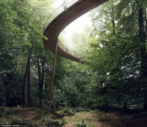 Unique: Users can amble through the privately-owned forest with exceptional access to the foliage and natural wildlife