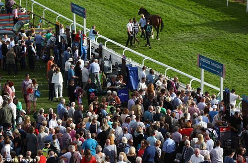 Sportsmail's expert Robin Goodfellow dishes out his tips ahead of Wednesday's meetings