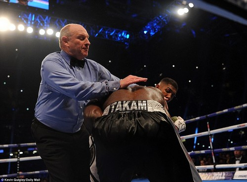 Both boxers continued to battle on as referee Phil Edwards called an end to the spectacle midway through round 10
