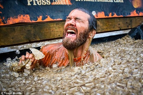 Stuck in the mud: Tough Mudder Full event entrants are required to negotiate their way through a plethora of obstacles between a 10 and 12-mile course