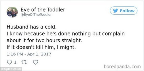 @EyeOfTheToddler wrote: 'Husband has a cold. I know because he's done nothing but complain about it for two hours straight. If it doesn't kill him, I might'