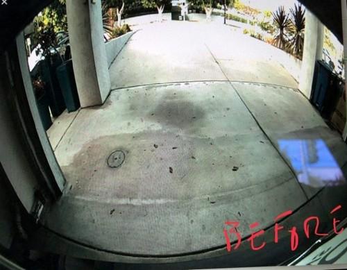 Камера заднего вида на Tesla Model 3 дает явственно видимый эффект «рыбьего глаза». | Фото: electrek.co.