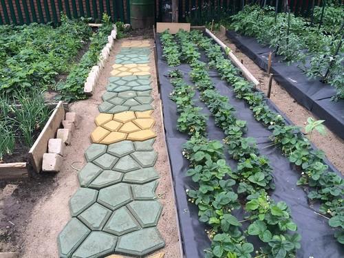 Из материалов, которые всегда находятся под рукой у любого дачника, можно легко смастерить садовую дорожку.