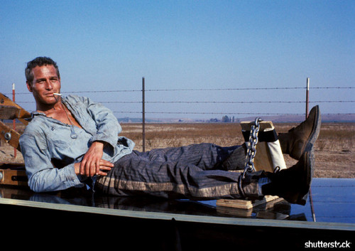 8 Iconic Movies from the New Hollywood Era, in Photos - Cool Hand Luke