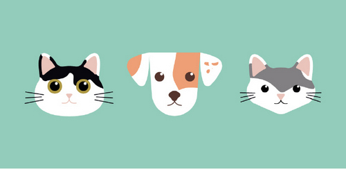 Create a Flat Vector Illustration of Your Pets in Illustrator - Fun Vector Illustration