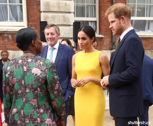 Prince Harry and Meghan Markle: The Year in Review - Yellow Dress