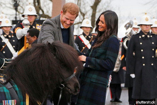 Prince Harry and Meghan Markle: The Year in Review - Harry Pets a Pony