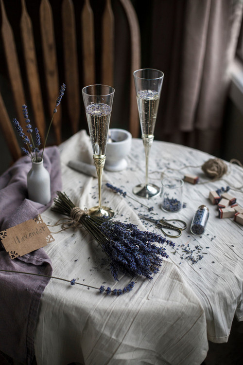 January Fresh: New Content We Love - Champagne and Lavender