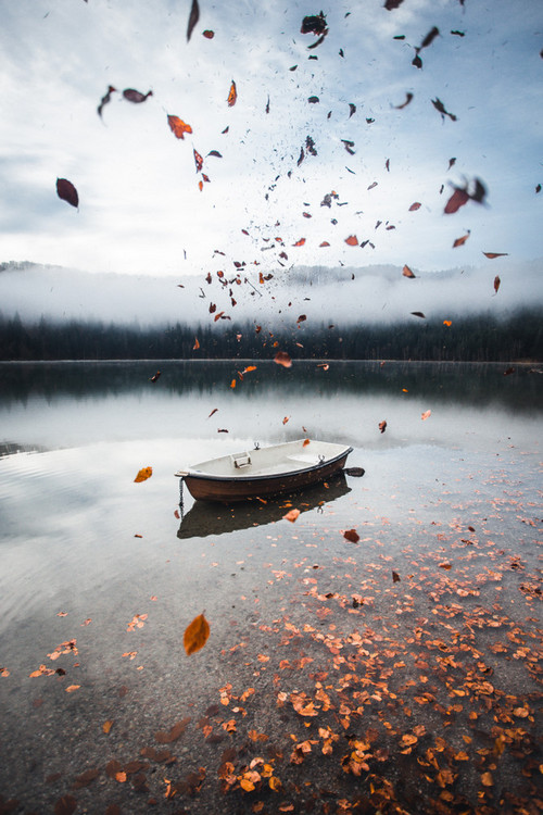 January Fresh: New Content We Love - Boat in Autumn