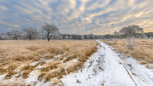 Professional Tips for Magical Winter Landscape Photos - Track the Weather