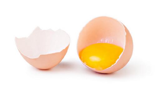 The Egg - World Record Egg
