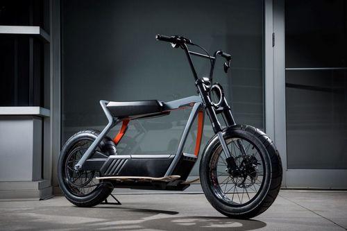 Harley-Davidson Electric Bike (2)
