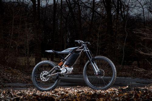 Harley-Davidson Electric Bike (4)