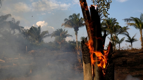 A tract of Amazon jungle is seen burning as it is being cleared by loggers and farmers in Iranduba, Amazonas state, Brazil August 20, 2019