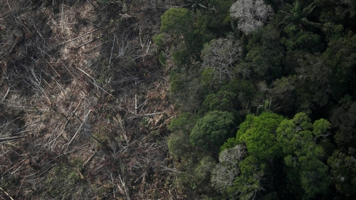 An aerial view of a deforested plot of the Amazon near Porto Velho, Rondonia State, Brazil August 22, 2019